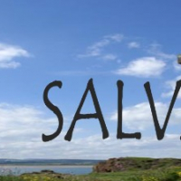 Salvationn
