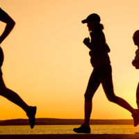 Exercise Old Age Fitness